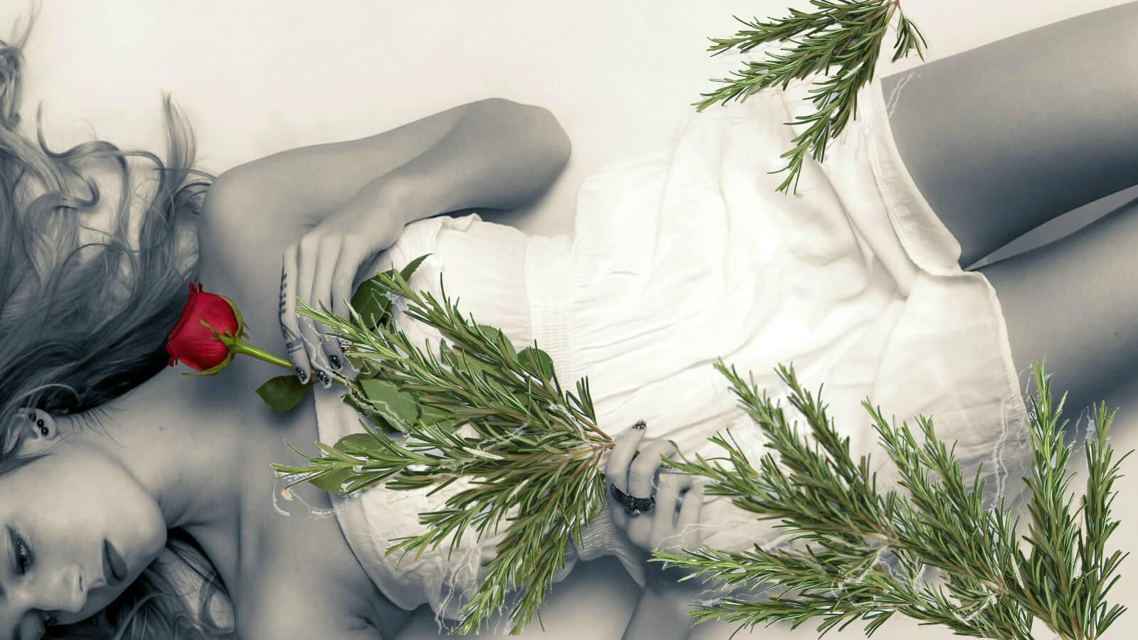 Plantas medicinais e endometriose